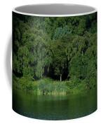 Everywhere And Nowhere - Holmdel Park Coffee Mug