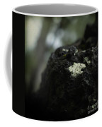 Evolution Of Thought Coffee Mug