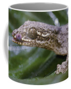 Extreme Close-up Of A Gecko In The Rain Coffee Mug