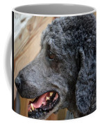 Eye On The Cat Coffee Mug