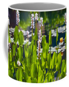 Fabulous Water Hyacinth  Coffee Mug