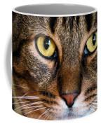 Face Framed Feline Coffee Mug by Art Dingo