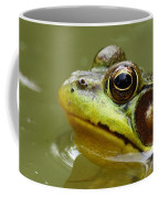 Face Of A Prince Coffee Mug