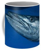 Facial View Of A Great Barracuda, Kimbe Coffee Mug