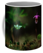Fairy Slipper Orchid Calypso Bulbosa Coffee Mug