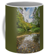 Fall At The Low Stream Coffee Mug