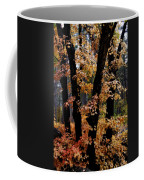 Fall Beckons  Coffee Mug