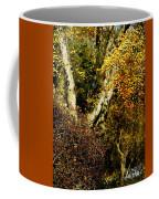 Fall Color Wall Art Landscape Coffee Mug