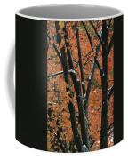 Fall Foliage Of Maple Trees After An Coffee Mug by Tim Laman