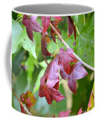 Fall Has Begun Coffee Mug