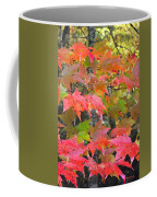 Fall Leaves Filtered Coffee Mug