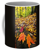 Fall Leaves In Forest Coffee Mug