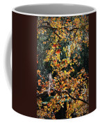 Fall Leaves Over Florida Pond Coffee Mug