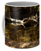 Fall Log Reflection Coffee Mug