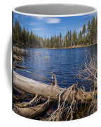 Fall Logs On Reflection Lake Coffee Mug