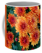 Fall Mums Coffee Mug