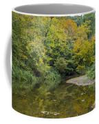 Fall Reflection Pool Coffee Mug