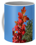 Fall Snowball Branch Coffee Mug