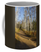 Fall Trail Scene 35 B Coffee Mug