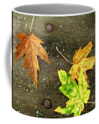 Fall Trio Coffee Mug