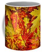 Fallen Autumn Maple Leaves  Coffee Mug