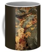 Fallen Autumn Sugar Maple Leaves Coffee Mug