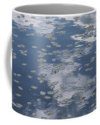 Fallen Leaves And Reflections Of Clouds Coffee Mug