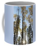 Falling Sunlight Fort Mcmurray Coffee Mug