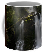 Falls Golden Light Coffee Mug