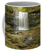 Falls Panorama Coffee Mug