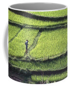 Farmer In Rice Paddy, Elevated View Coffee Mug