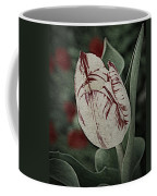 Feathered Markings Coffee Mug
