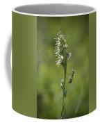 Feathery Reed Canary Grass Vignette Coffee Mug