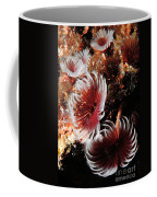 Feeding Feather Dusters Coffee Mug