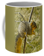 Feeding Tree Squirrel Coffee Mug