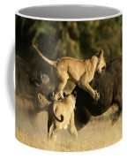 Female African Lions Pounce On An Coffee Mug by Beverly Joubert