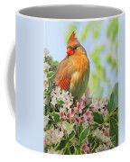 Female Cardnial In Wegia Digital Art Coffee Mug