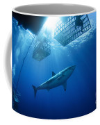 Female Great White With Cages Coffee Mug