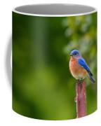 Fence Post Bluebird Coffee Mug