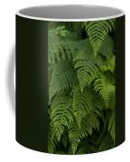 Fern Leaves At Valdez, Alaska Coffee Mug