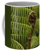 Fern Palm New Zealand Coffee Mug
