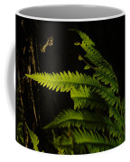 Fern Seeking Dawn Light Coffee Mug