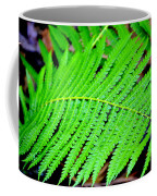 Ferns Coffee Mug