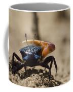Fiddler Crab Living In A Sandy Tidal Coffee Mug