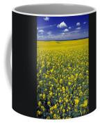 Field Of Canola Coffee Mug