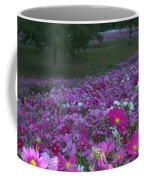 Field Of Flowers Along The Highway  Coffee Mug