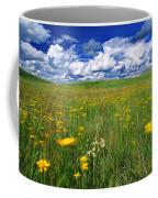 Field Of Flowers, Grasslands National Coffee Mug