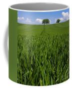 Field Of Wheat. Auvergne. France. Europe Coffee Mug