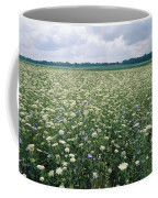 Field Of Wildflowers, Montezuma Coffee Mug