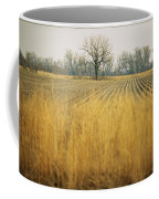Fields At The Lillian Annette Rowe Bird Coffee Mug